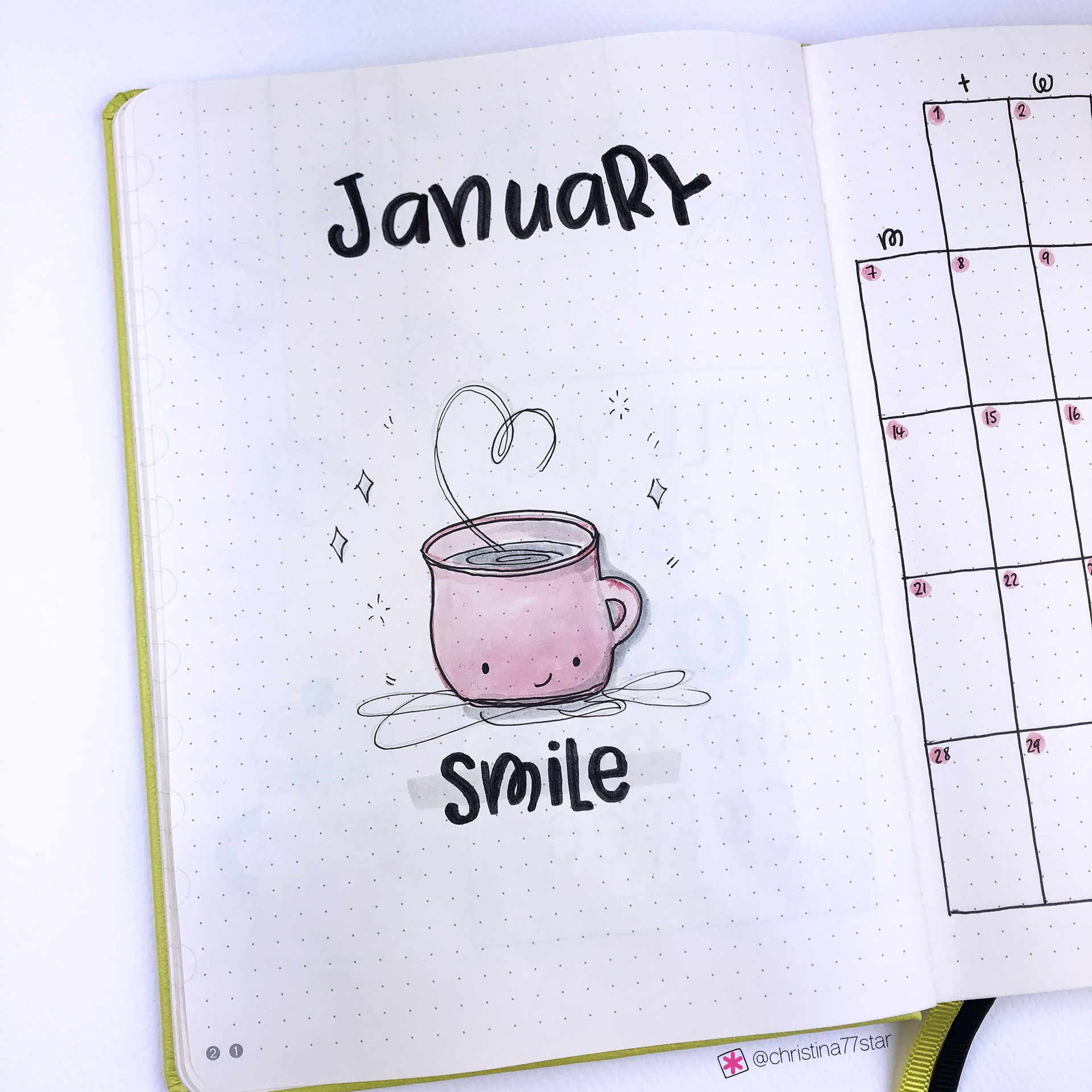 Plan With Me - Bullet Journal setup - January 2019