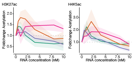 Different eRNA sequences produce different patterns of CBP-dependent histone acetylation.