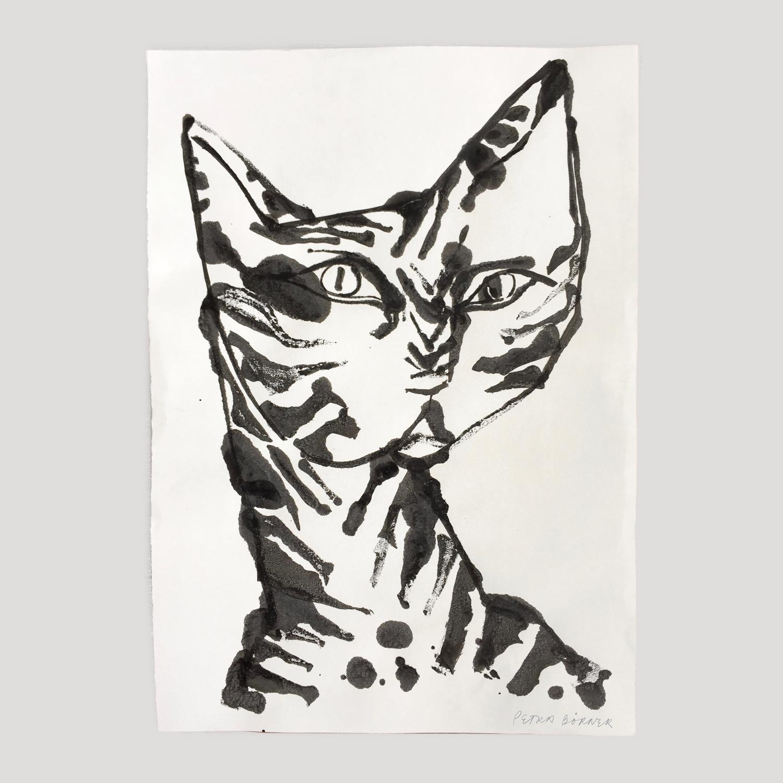 Cat I - Ink on paper