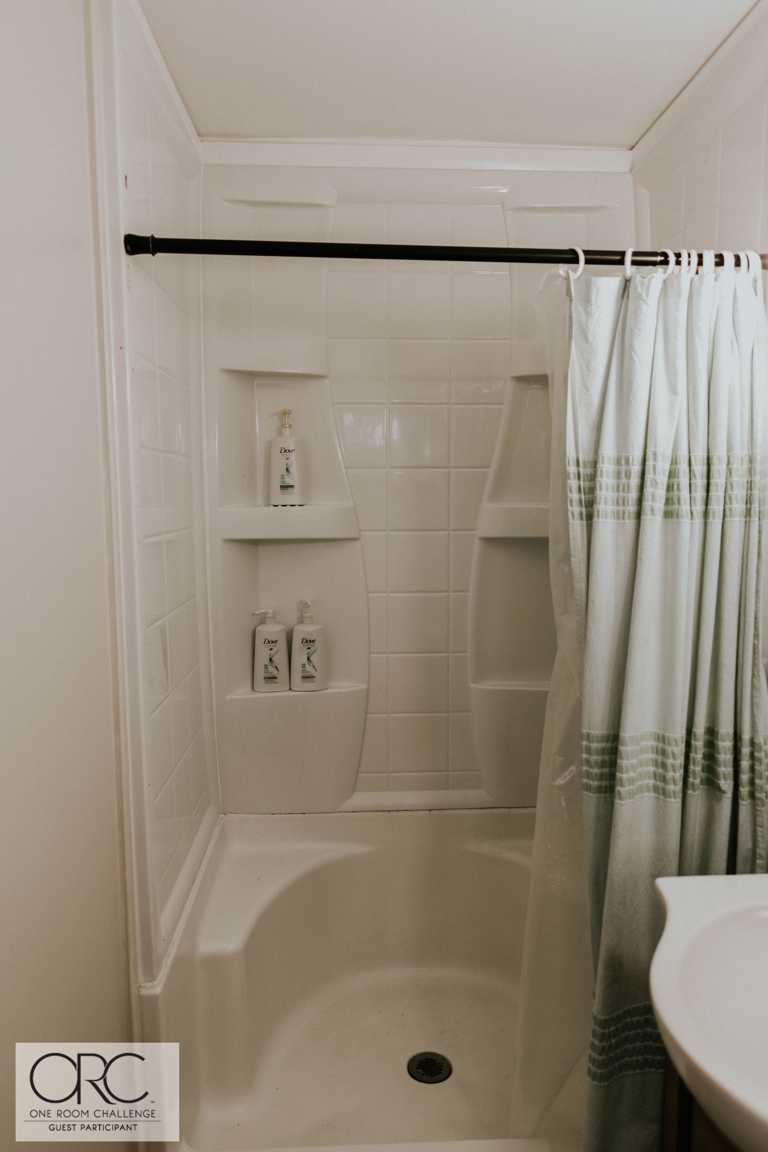 GUEST PARTICIPANT ONE ROOM CHALLENGE MASTER BATHROOM 6 (1 of 1).jpg