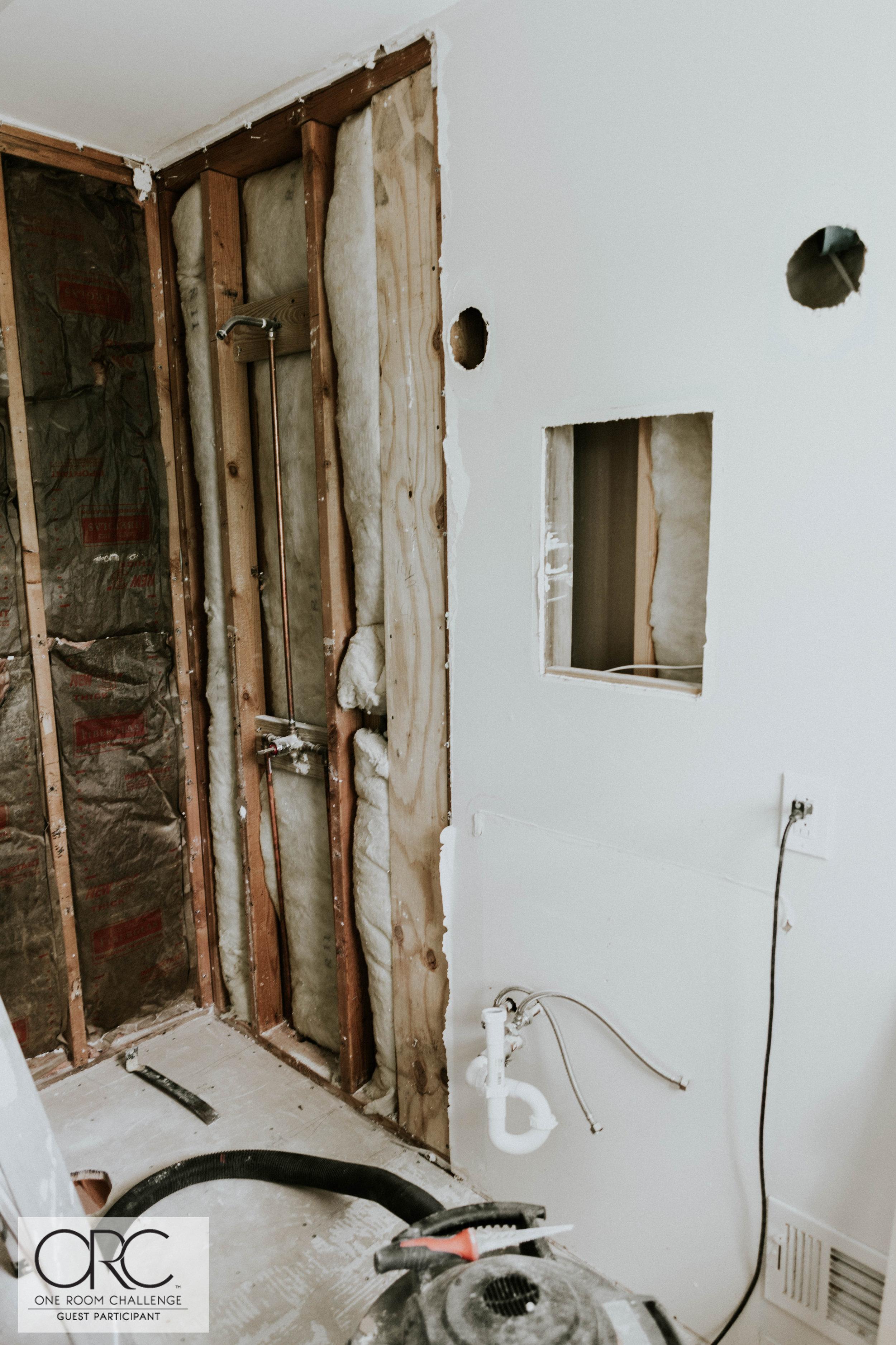 WEEK THREE MASTER BATHROOM UPDATE 2 (1 of 1).jpg