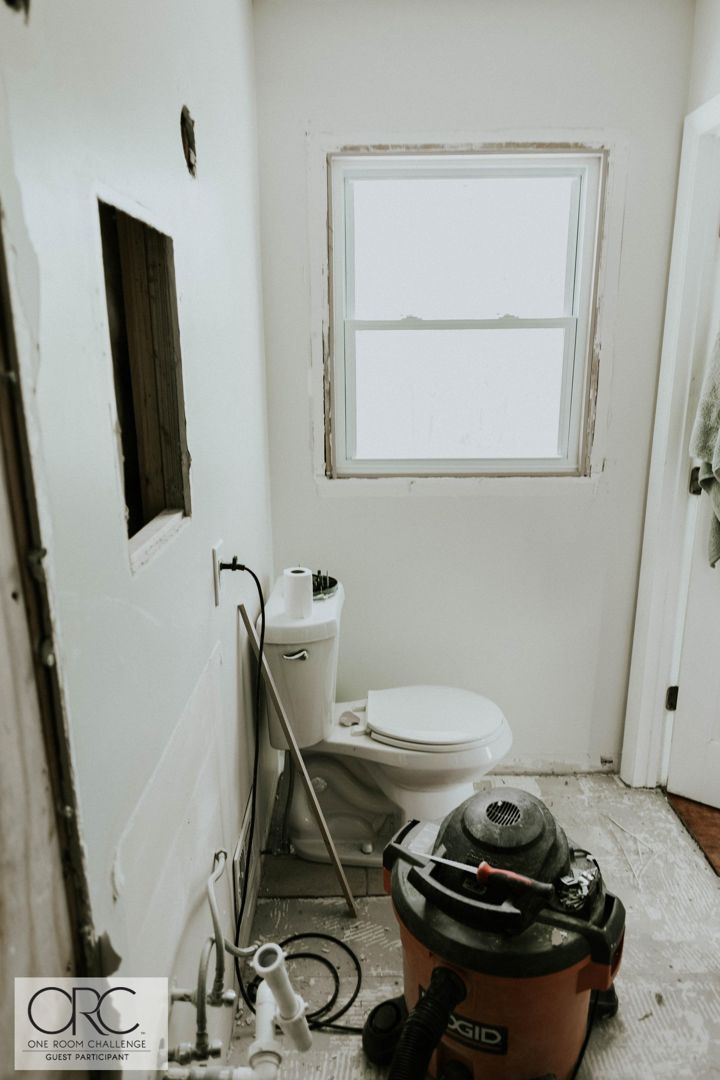 WEEK THREE MASTER BATHROOM UPDATE 3 (1 of 1).jpg