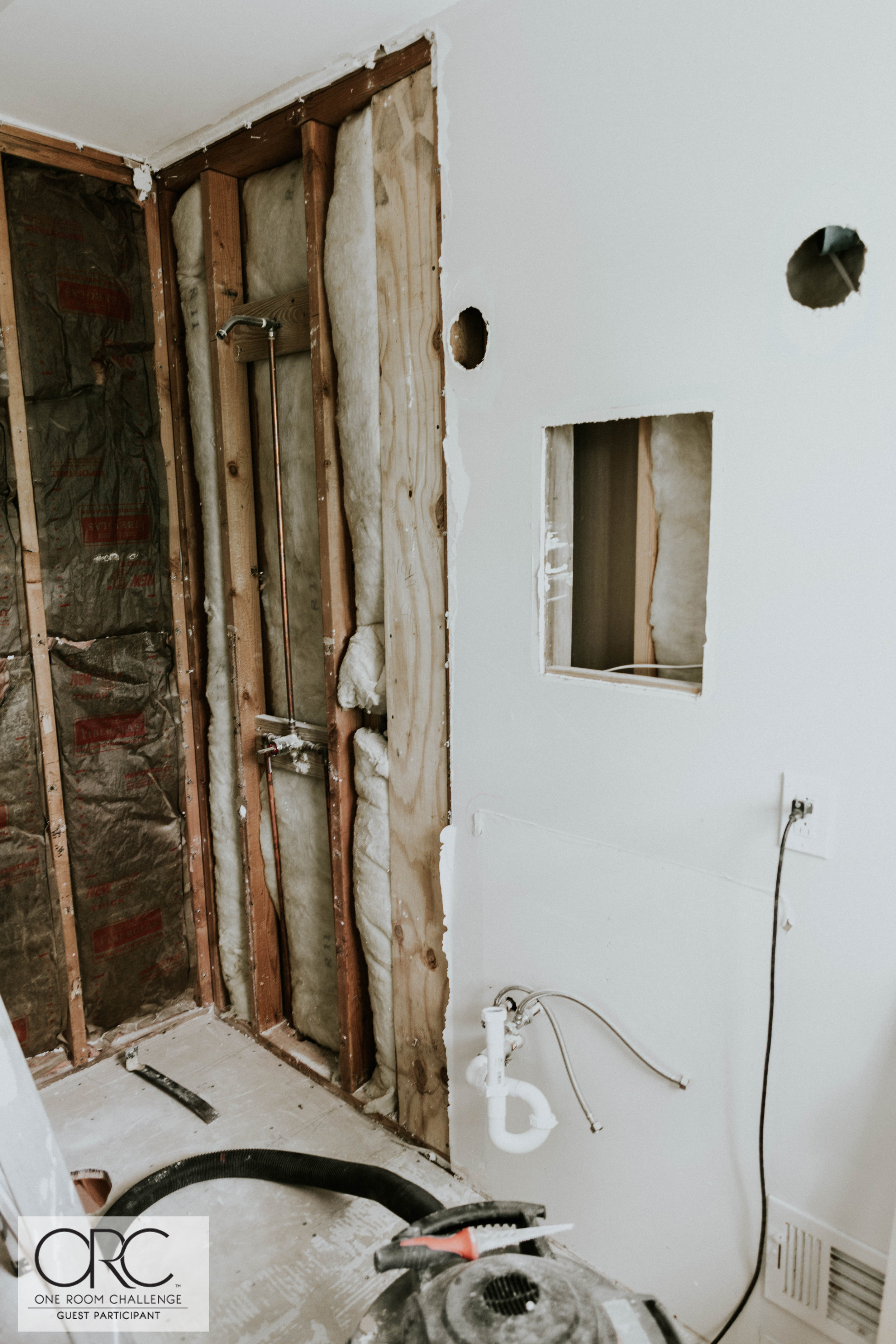 WEEK THREE MASTER BATHROOM UPDATE 2 (1 of 1).jpg
