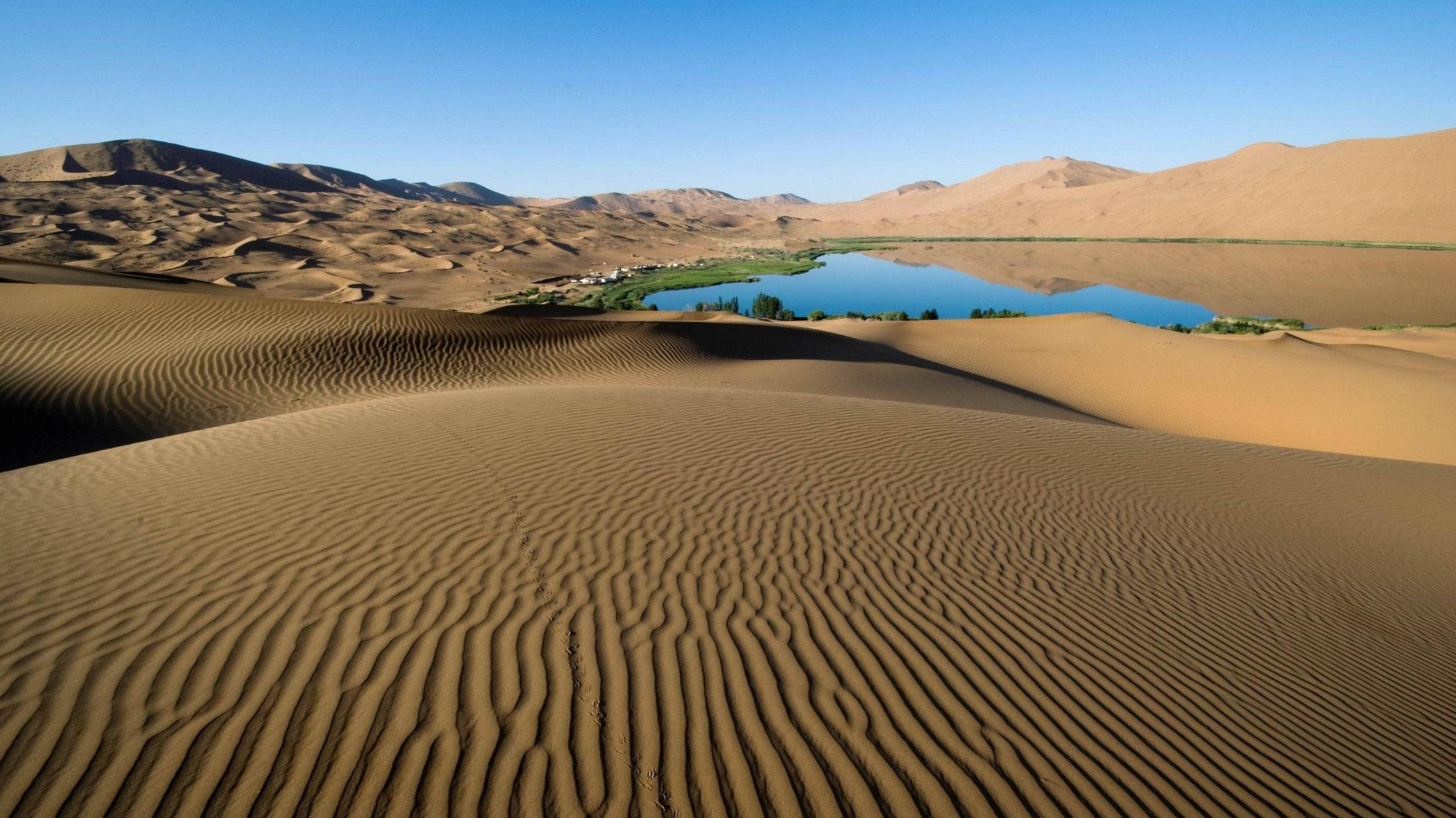 desertification1.jpg