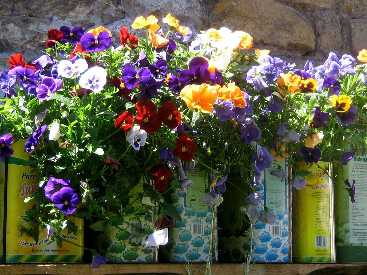 flower-garden-bar-restaurant-somerset.jpg