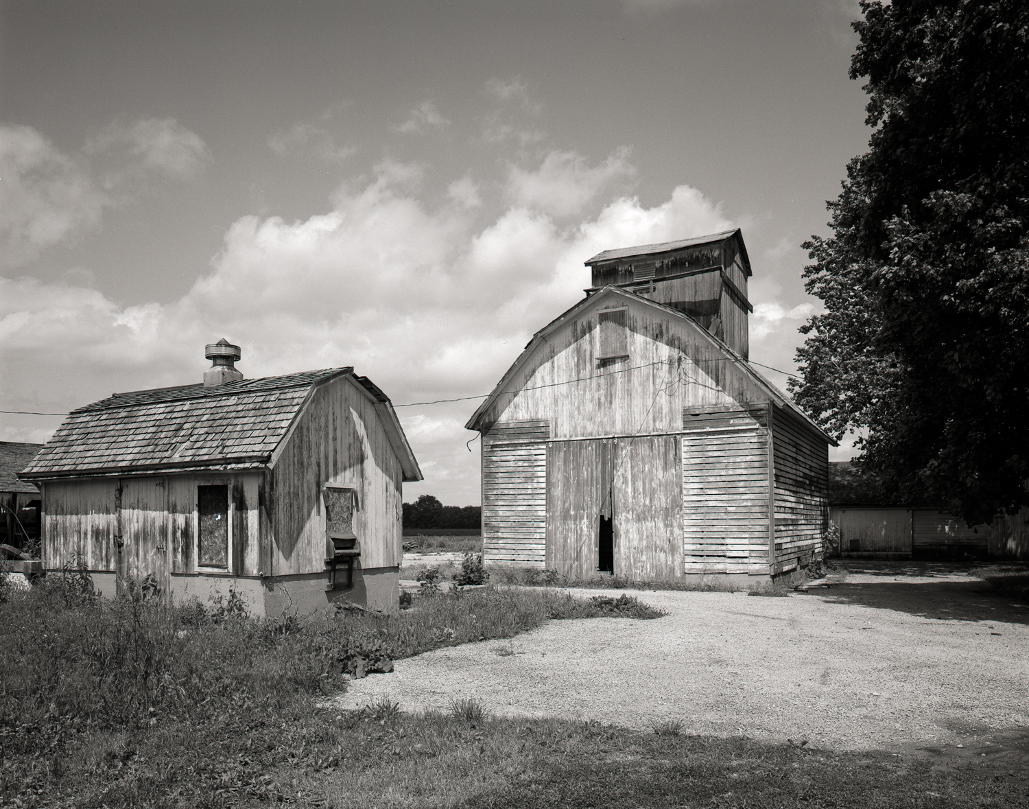 Burks Rueckert Barns Illinois 2001