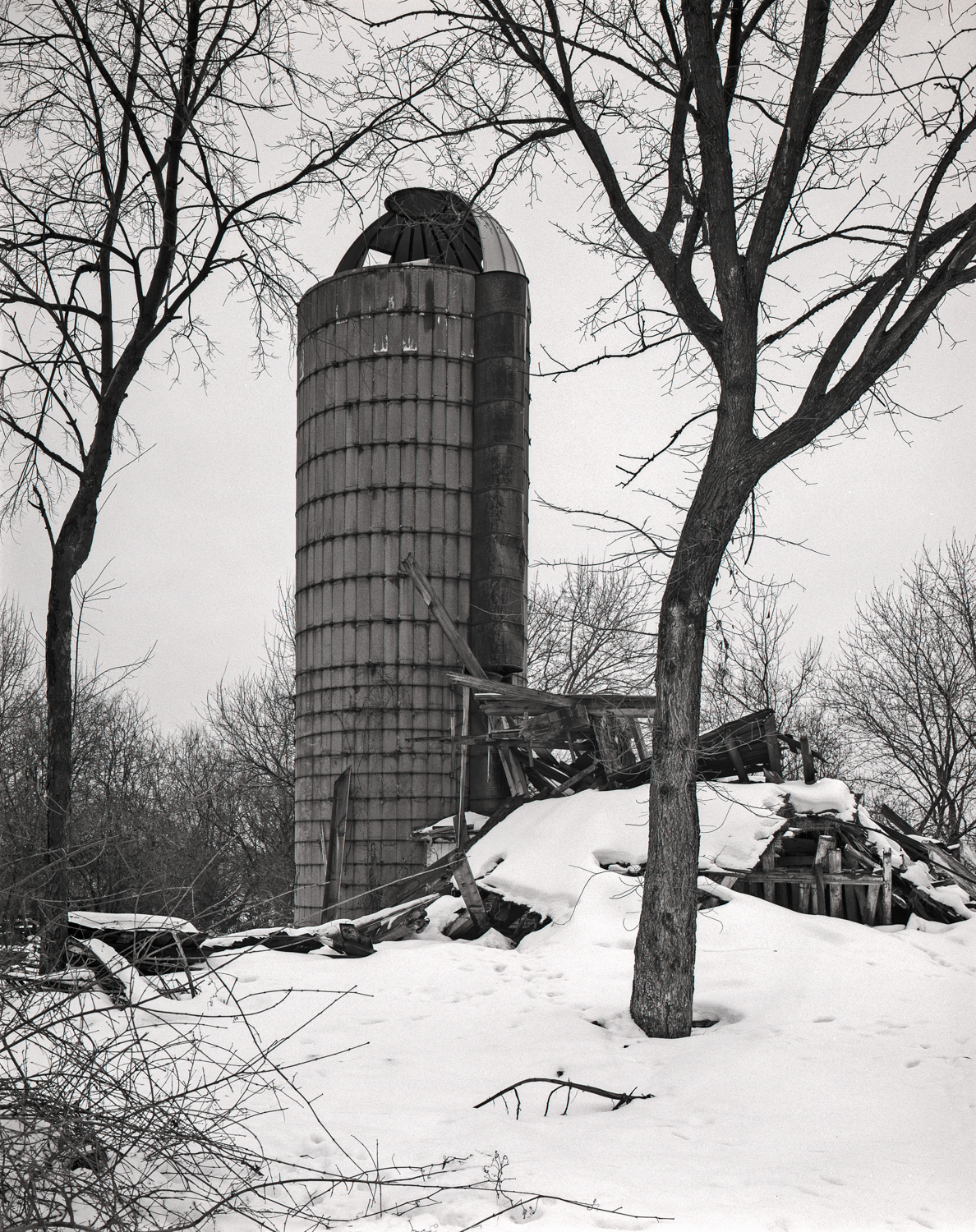 William Patrick Farmstead Silo Illinois 2001