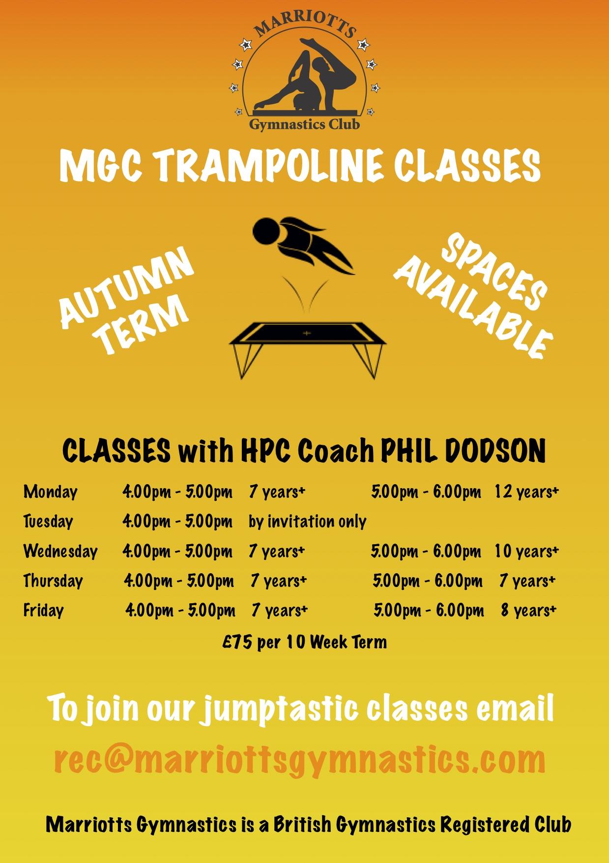 Autumn Trampoline Poster.jpg