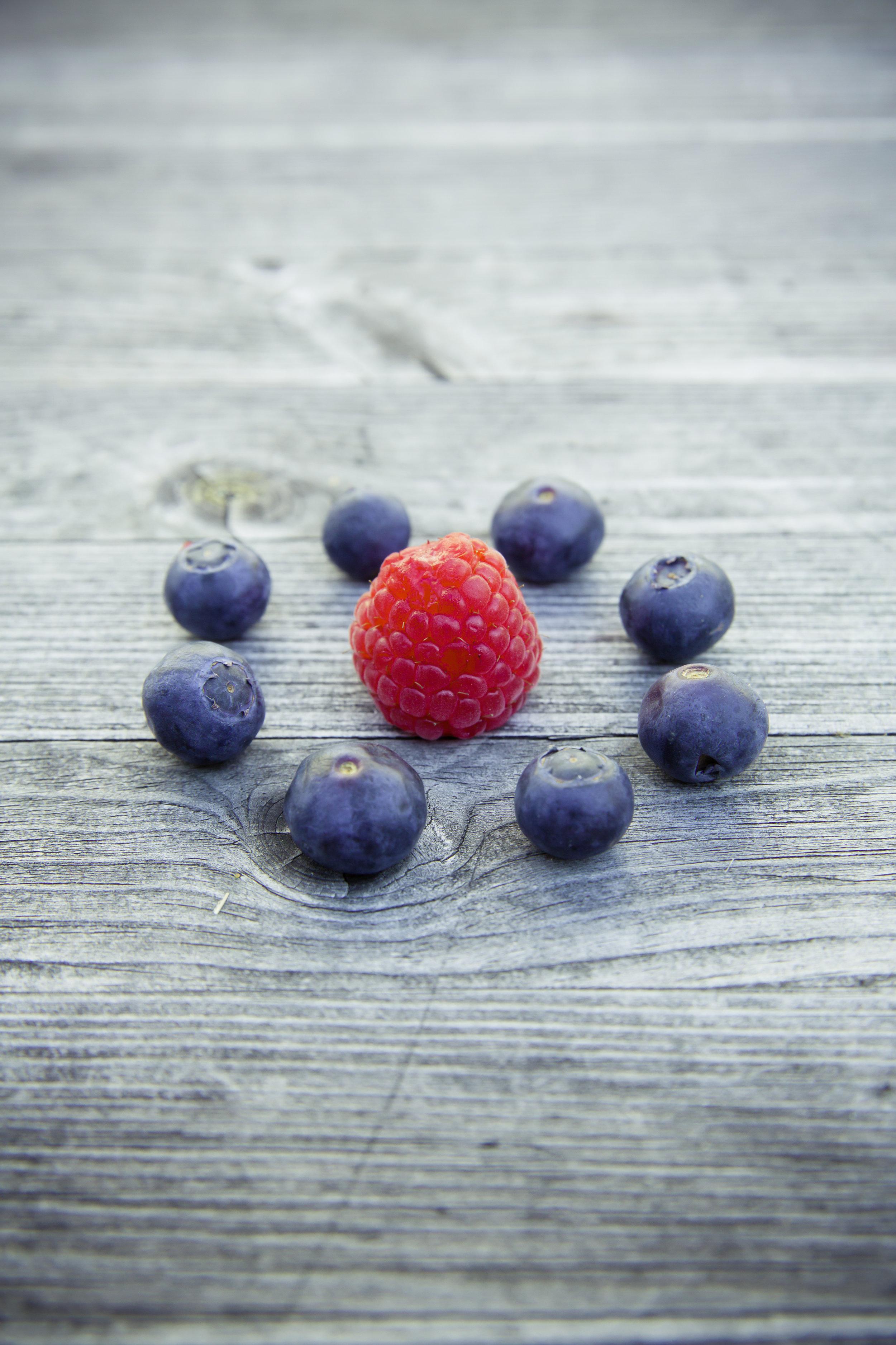 New York State berries blueberries raspberries