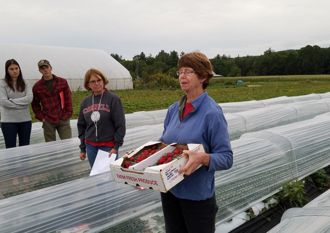 NYS Berry Growers Association Berry Production Workshop 7.jpg