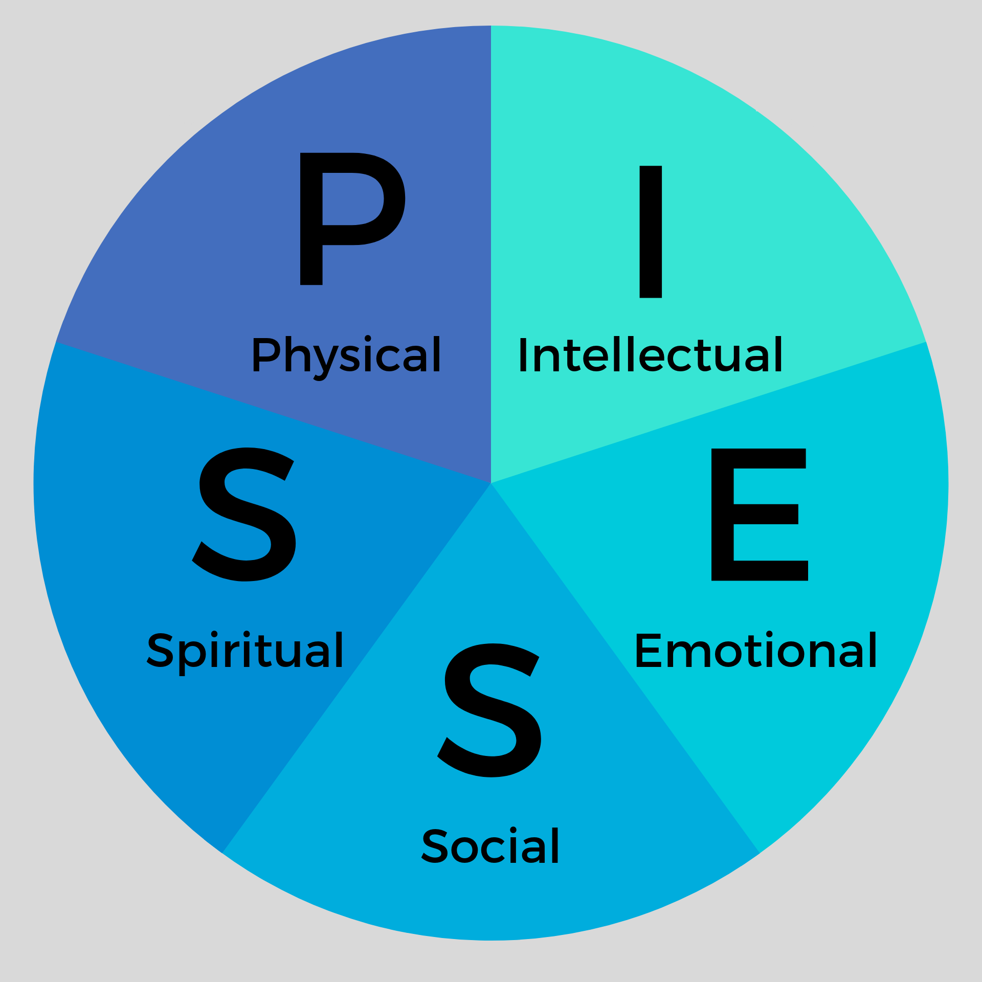 Piess chart.png