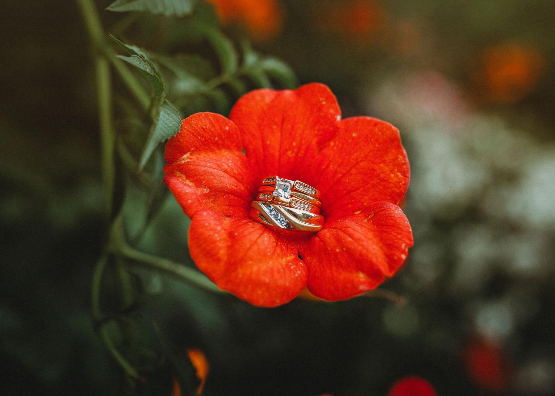 WeddingPhotography-104.jpg