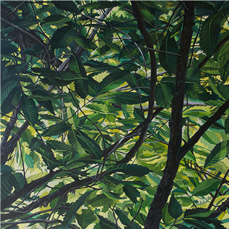 "American Chestnut #2: Oil on panel  30"" x 30"" 2015"