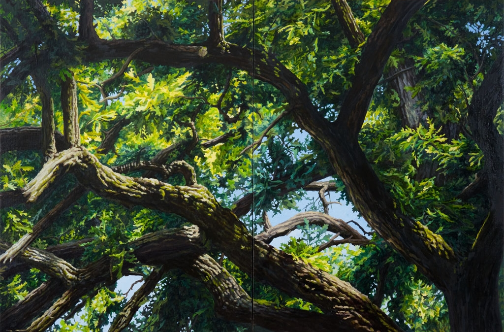 "Burr Oak Series: #5: Oil on linen canvas over panel 42"" x 60""  2011 SOLD"