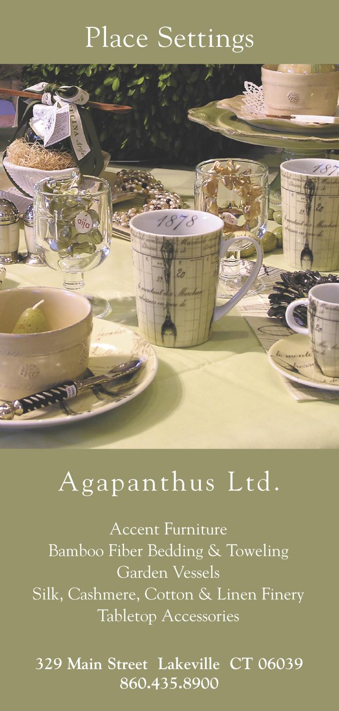 Agapanthus_StoreAd
