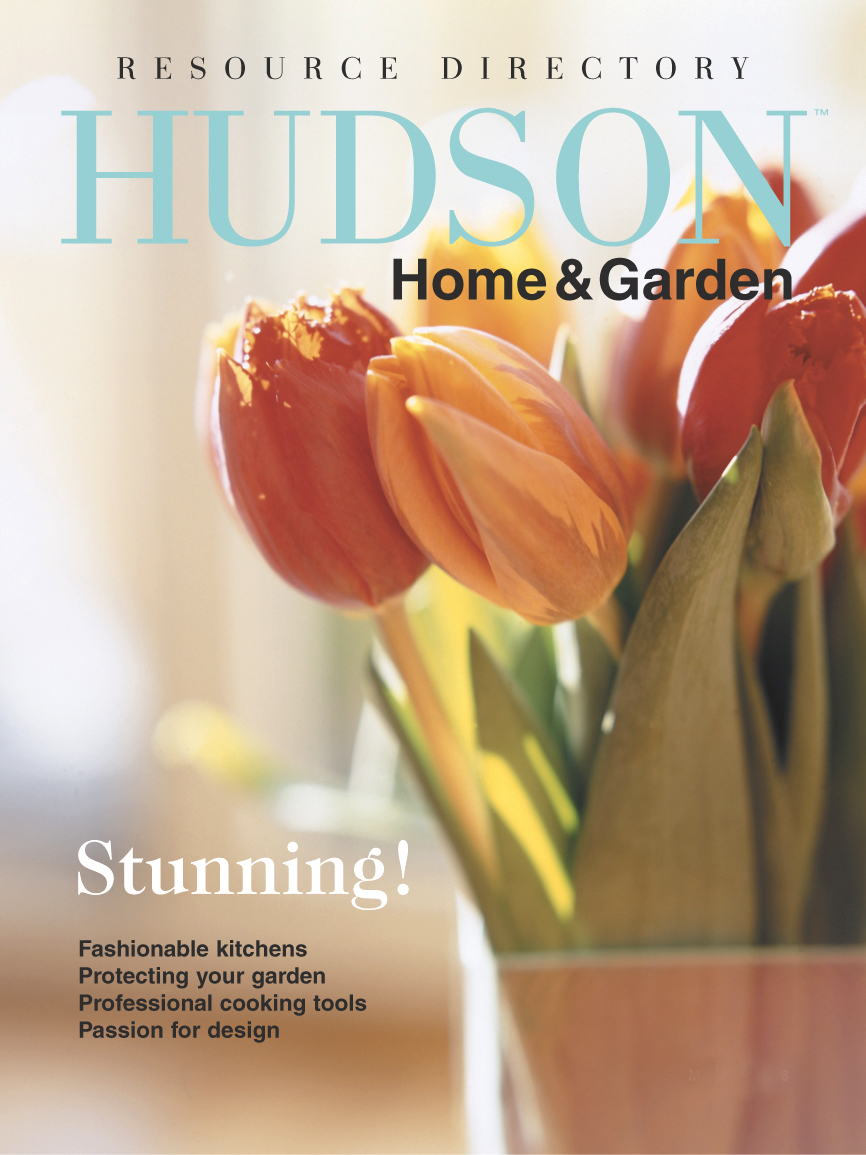 HudsonMagCover_ResourceDirectory_05.jpg