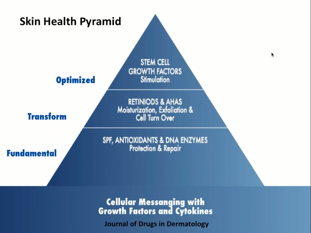 Skin Health Pyramid - (Stem cell growth factors at the top!)