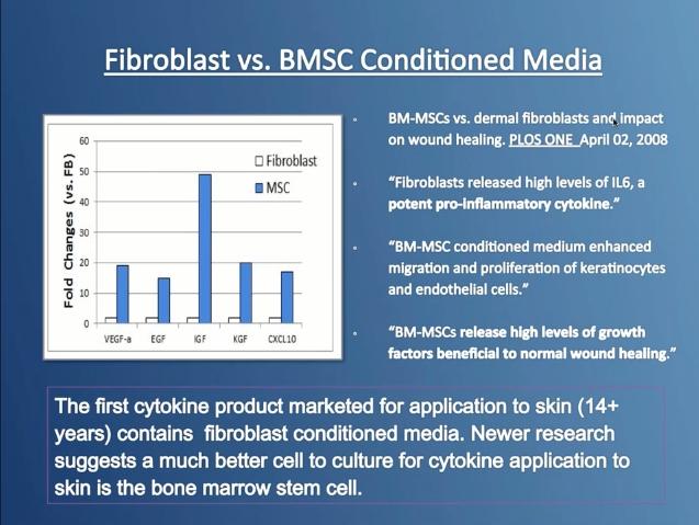 Fibroblast cells? - Fibroblast cells are not bone marrow stem cells (BMSC).