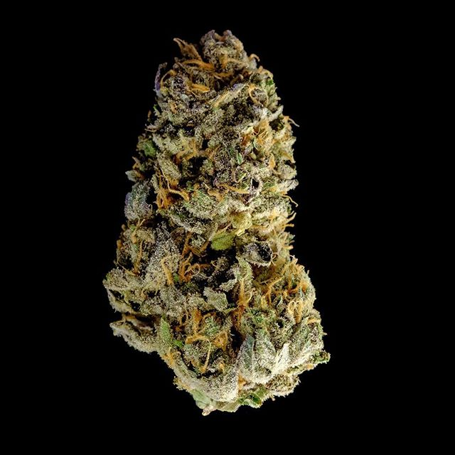 Querkle will not disappoint . . #weed #nugporn #420 #weedporn #highlife #seattle #tmt #girlswhosmoke #smoke #instaweed #ganja #maryjane #kush #dab #dablife #hightimes #blunt #stoner #blaze #toke #bud #cannabis #potd #wcw #legalize #dank #mmj #munchies #joint #toke #stoned  WARNING: This product has intoxicating effects and may be habit forming. Smoking is hazardous to your health and there may be health risks associated with consumption of this product. This product should not be used by women that are pregnant or breastfeeding. For use by adults 21 years or older. Keep out of reach of children  Tags  Weed maps, hightimes, weed.bae, weed.photography, thekushqueens, marijuana, bongbeauties, wickedgirls, dankdabbergirls, edmgirls, weshouldsmoke, dopemagazine