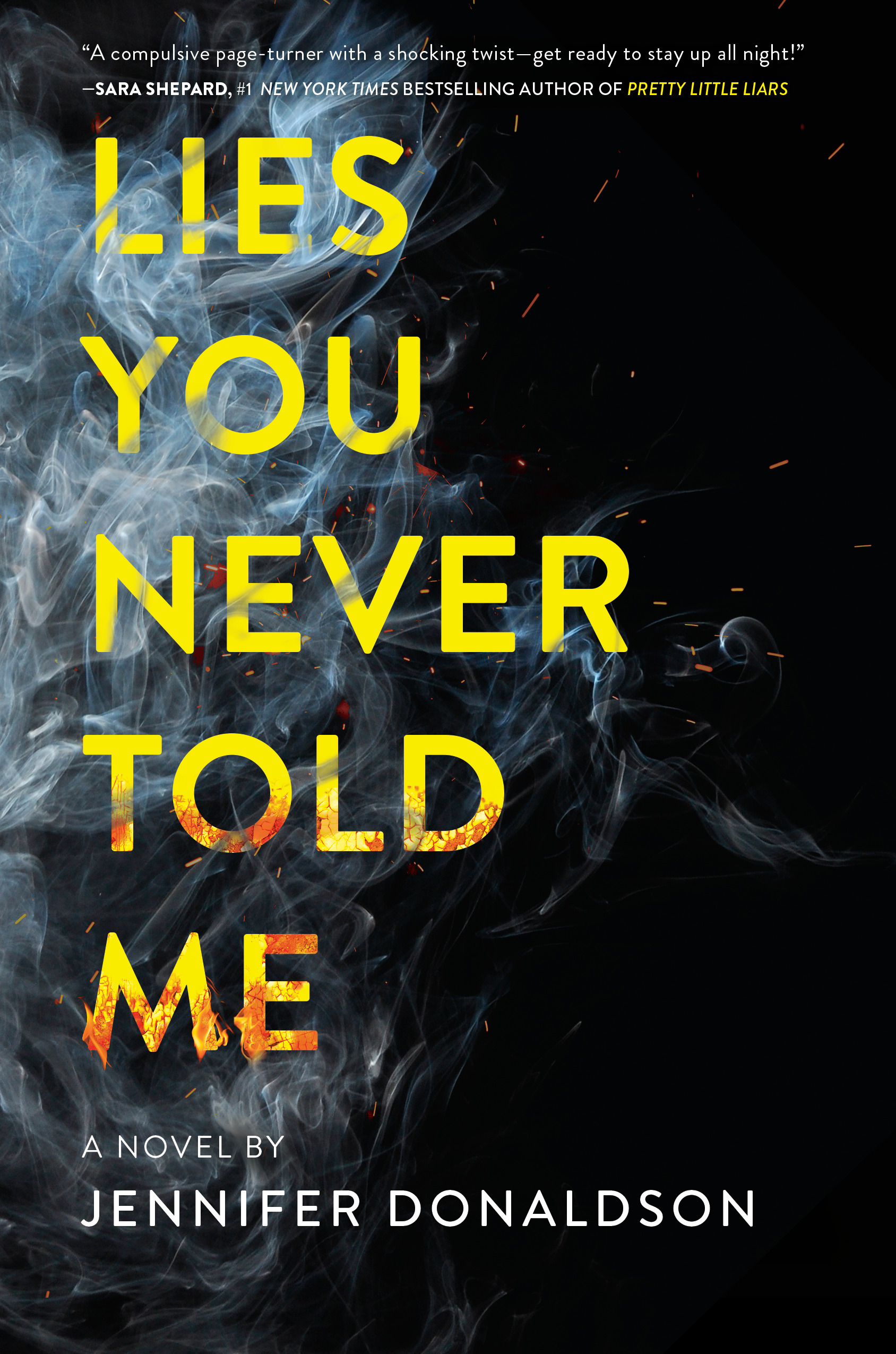 LIES YOU NEVER TOLD ME BOOK COVER