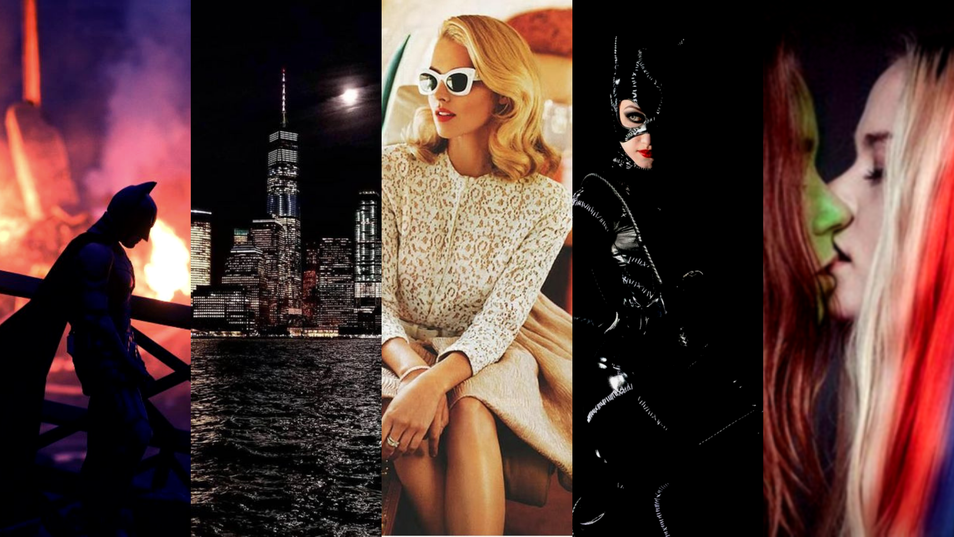 Catwoman Soulstealer Book Aesthetic