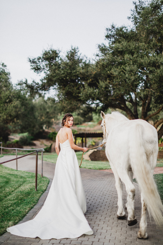 Loriana-San-Luis-Obispo-Wedding-Venues-Ashley-Rae-Studio-54.jpg
