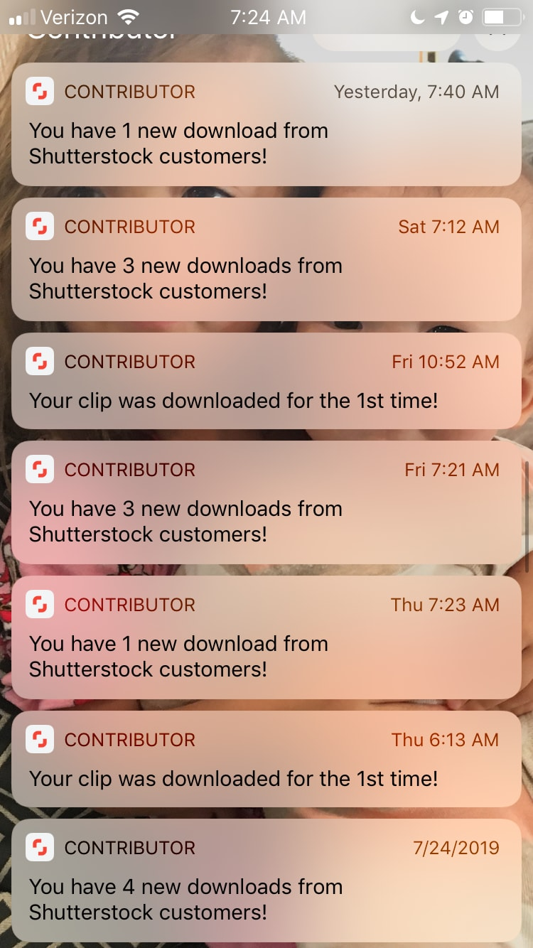 shutterstock alerts on phone.jpeg