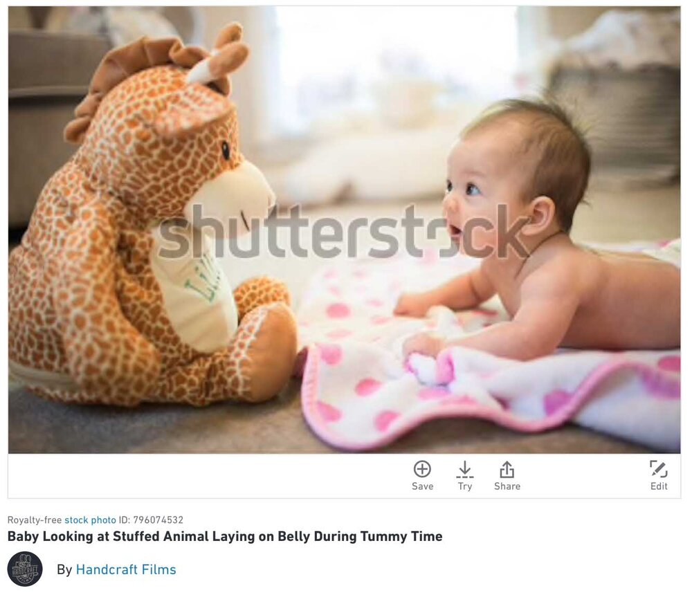top shutterstock photo sales.jpg