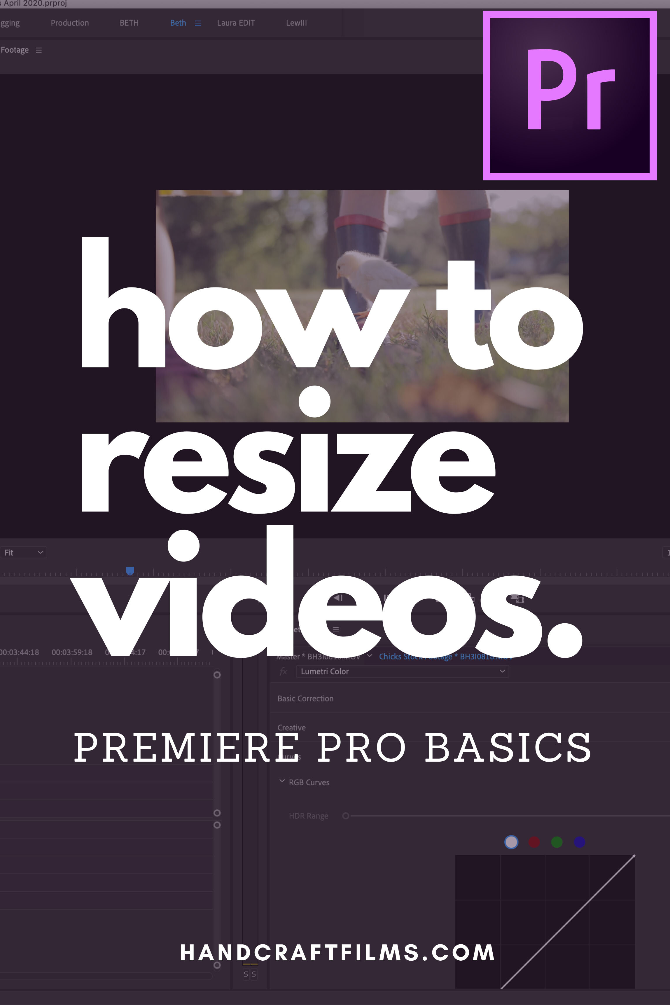 How to Resize Videos in Premiere Pro