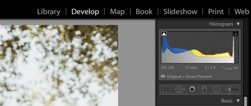 develop_mode_lightroom.jpg