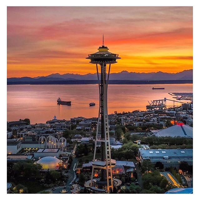 """These are the best spots in #Seattle for fresh fish, day drinking, and more, according to @danigcone, owner of @coneandsteiner. Read more at the link in bio."" 📸@craig.mc. . . Thanks so much for the fun write-up, @insidehook_travel! . . #shopconeandsteiner #seattle #capitolhill #pioneersquare #downtown #shoplocal #shopsmall #localvore #goodneighborsgoodfood"