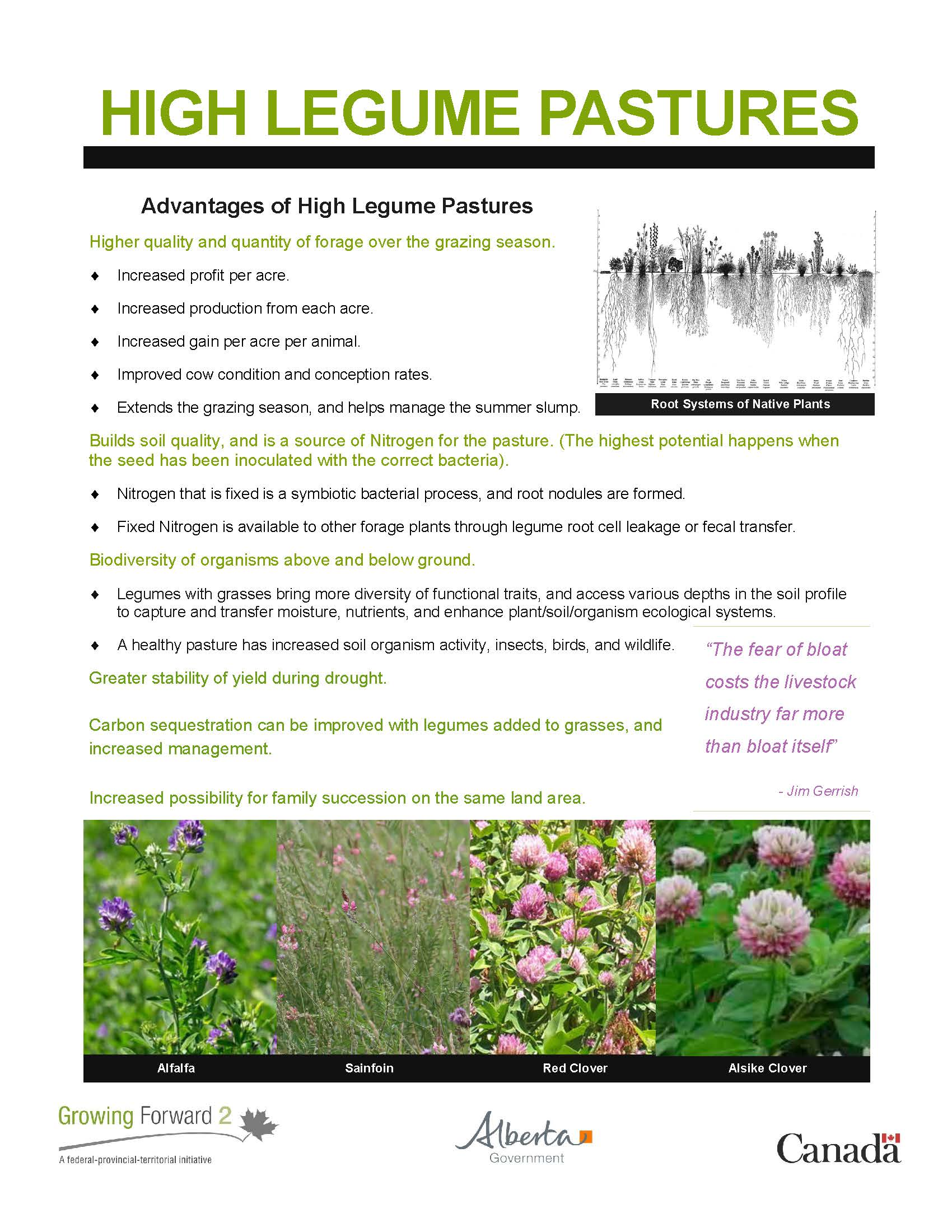 high-legume-pasture-learnings_Page_1.jpg