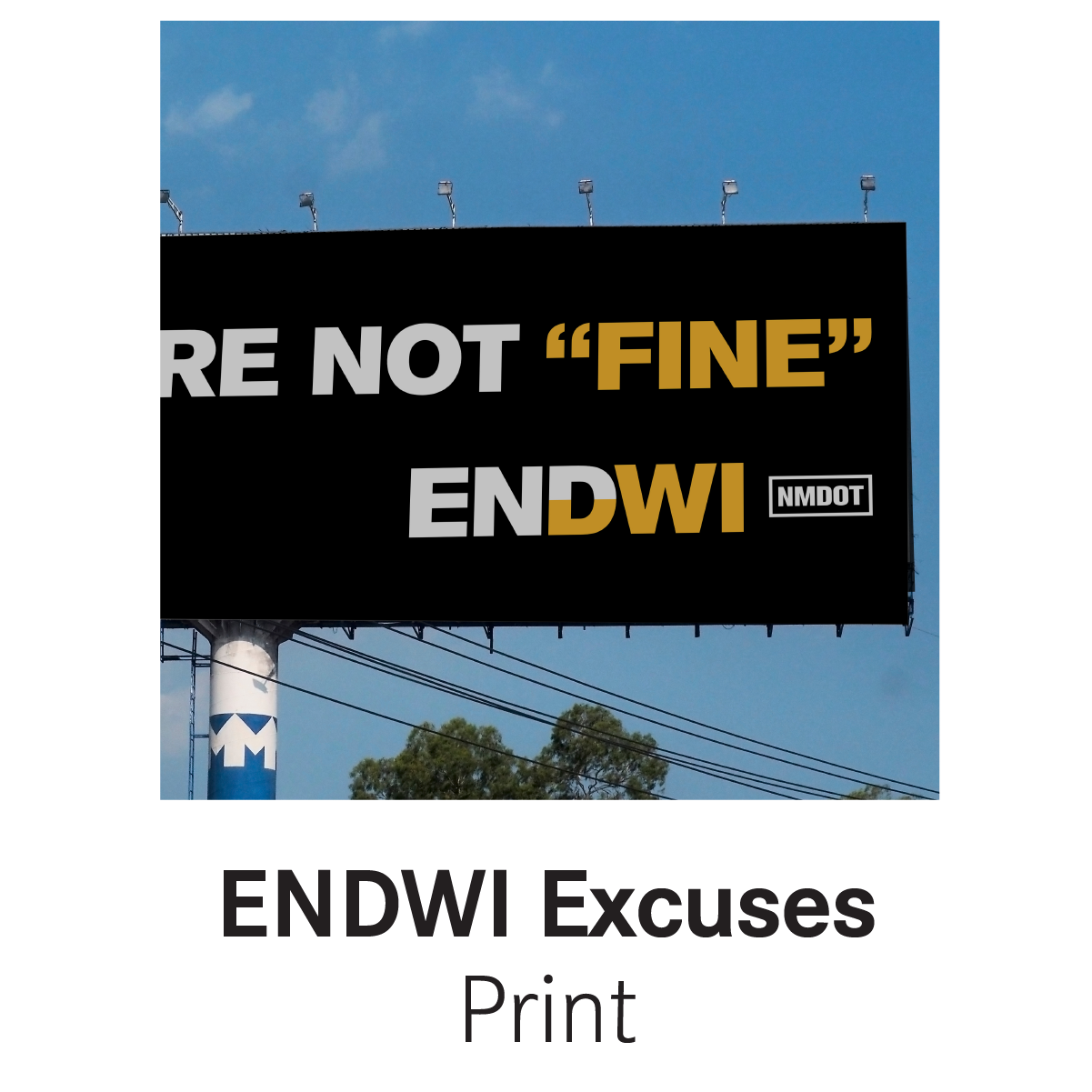 ENDWI Excuses.png
