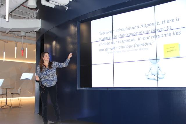 Cheryl Vigder Brause, Mindfulness Instructor