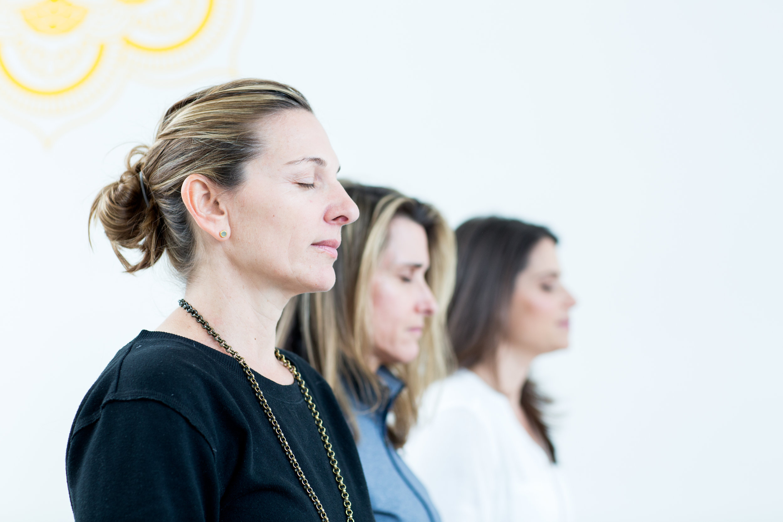 Foundations of Meditation:Concentration, Insight, Inquiry & Love - Monday, March 4th - 7:30 pm - 8:45 pmAlways wanted to establish your own meditation practice or experience the power of meditating with a group? This workshop is perfect for both beginner and experienced meditators as we explore the meditation techniques that we can use everyday to live a more awakened, alive, joyful and balanced life. This workshop will include guided meditation practice, discussion of practice techniques and ample time for questions.