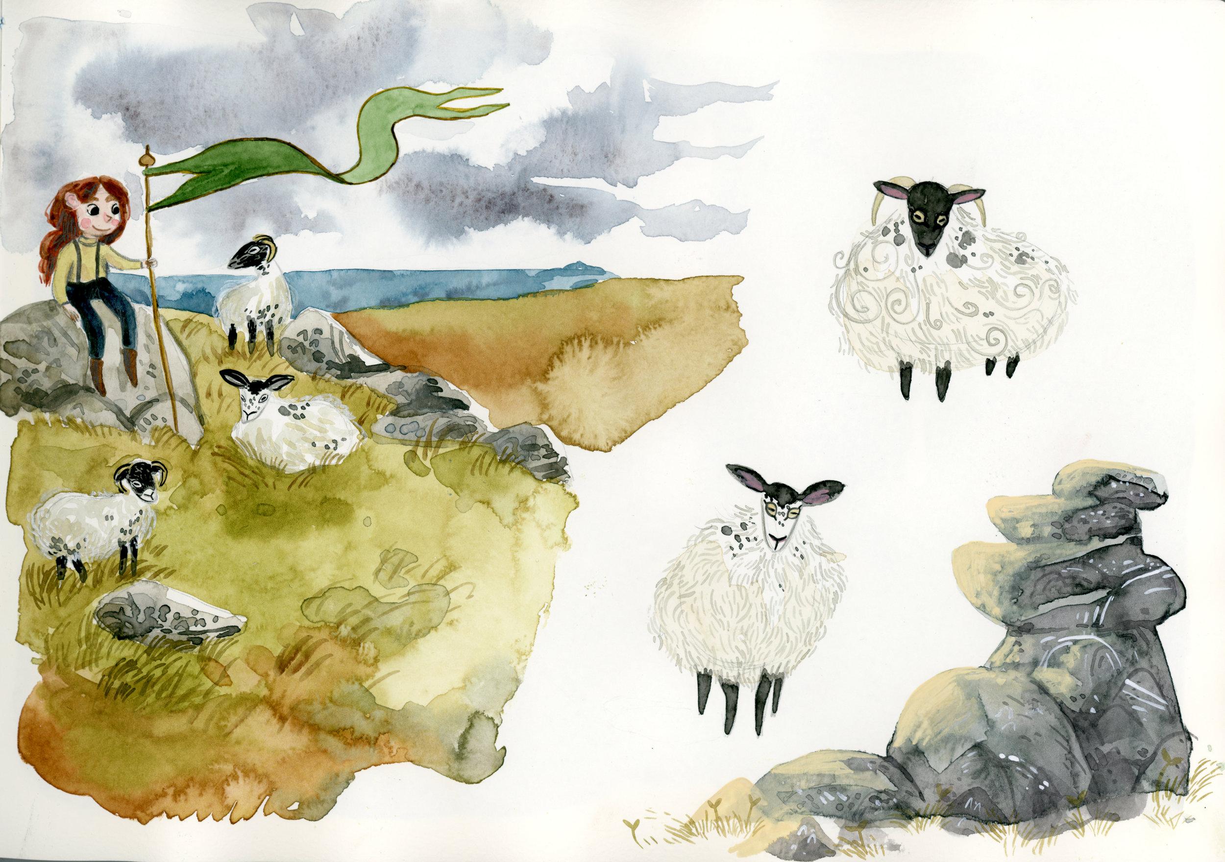 moor-sheep.jpg