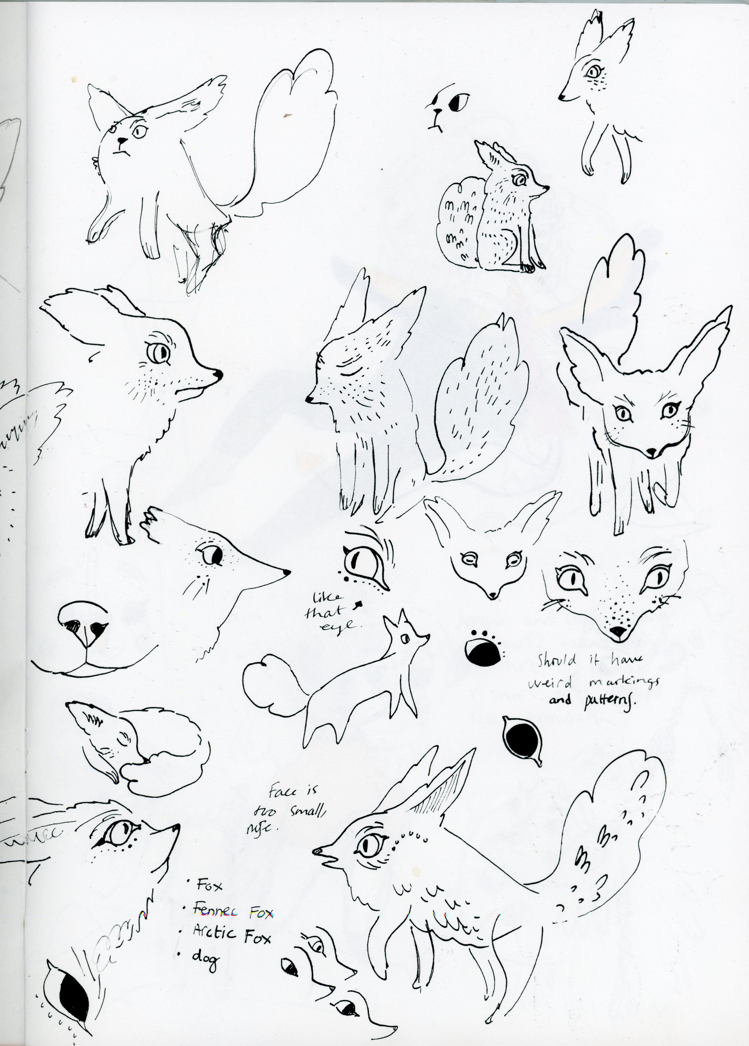 fennec-fox.jpg