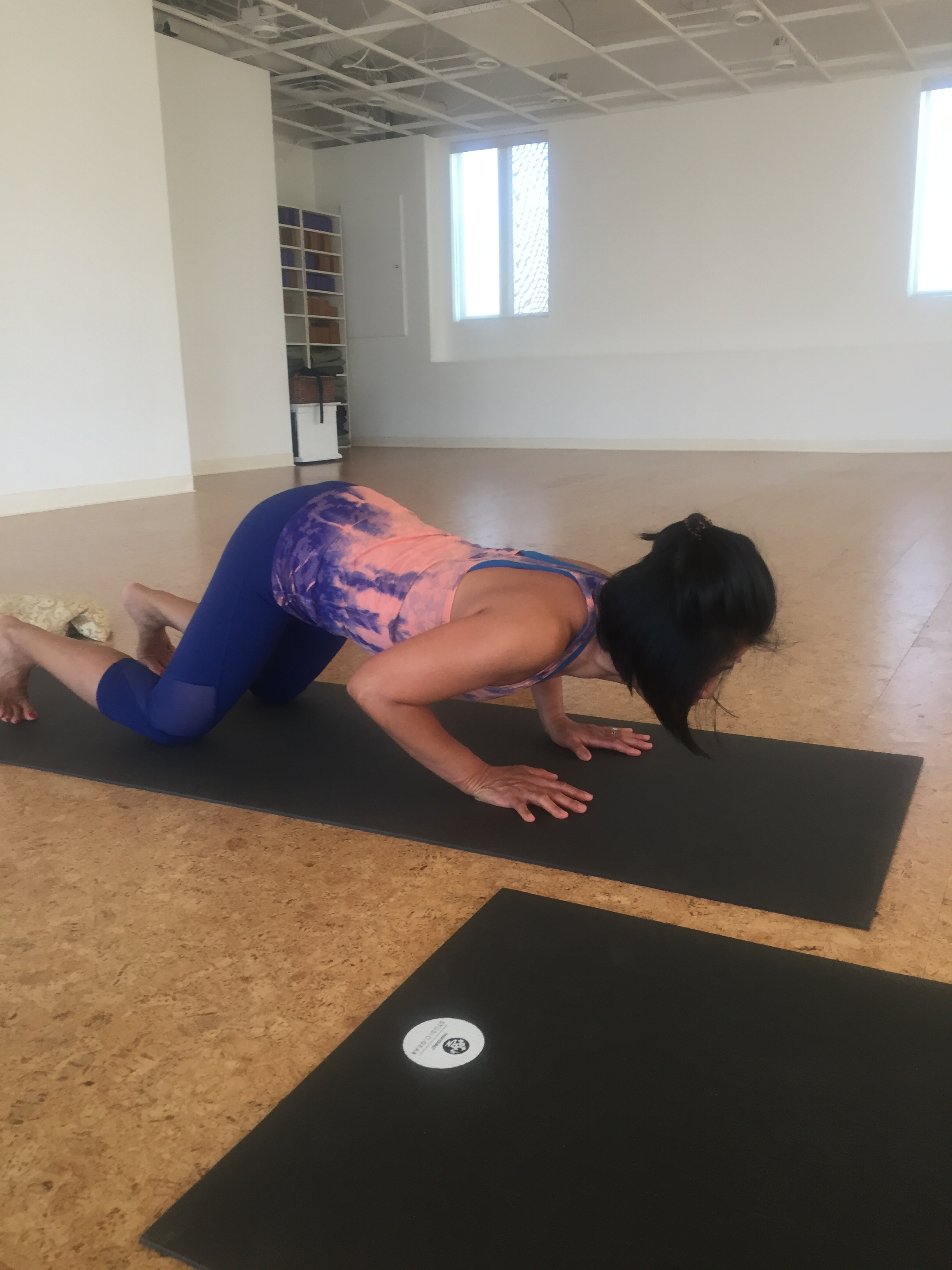 chaturanga push up (down)