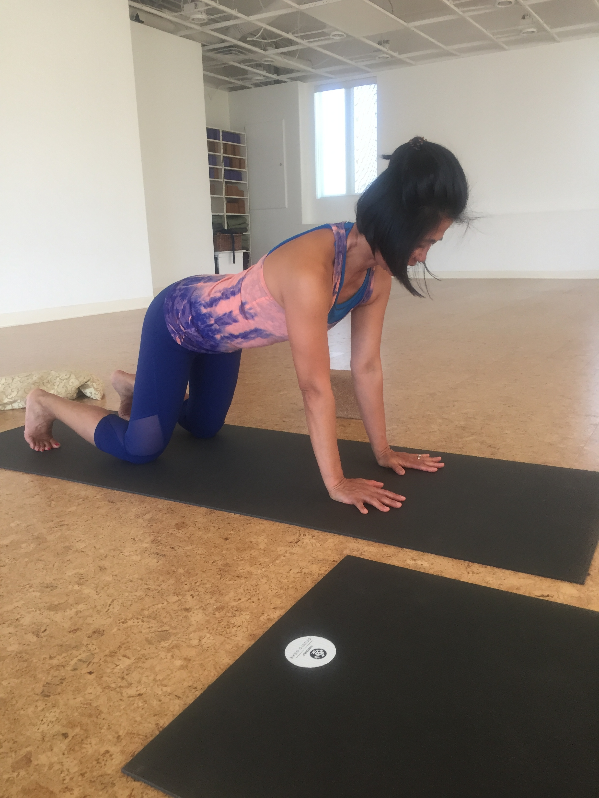 chaturanga push up (up)
