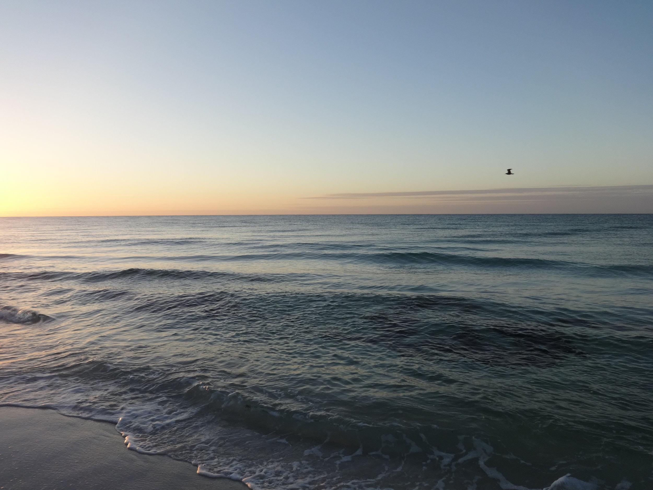 beach dawn 8.jpg
