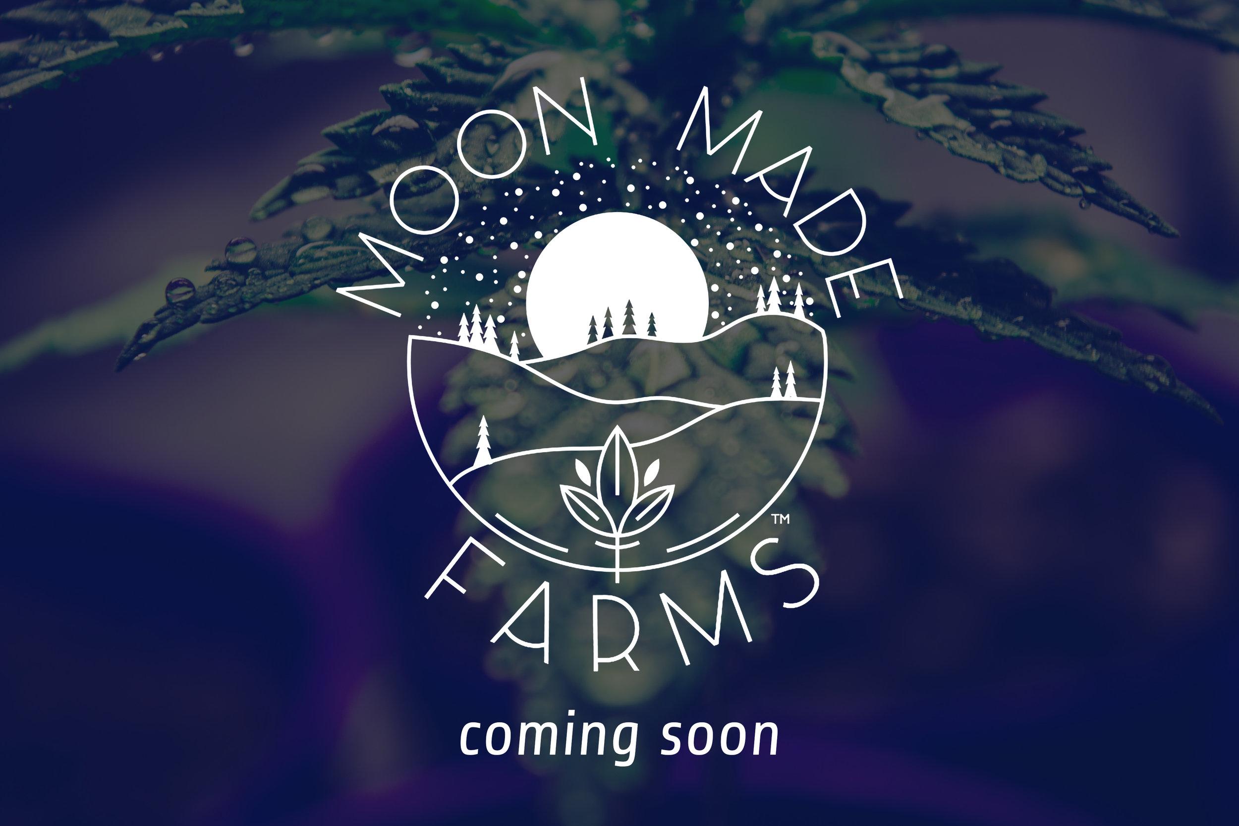 moonmade-comingsoon-2.jpg
