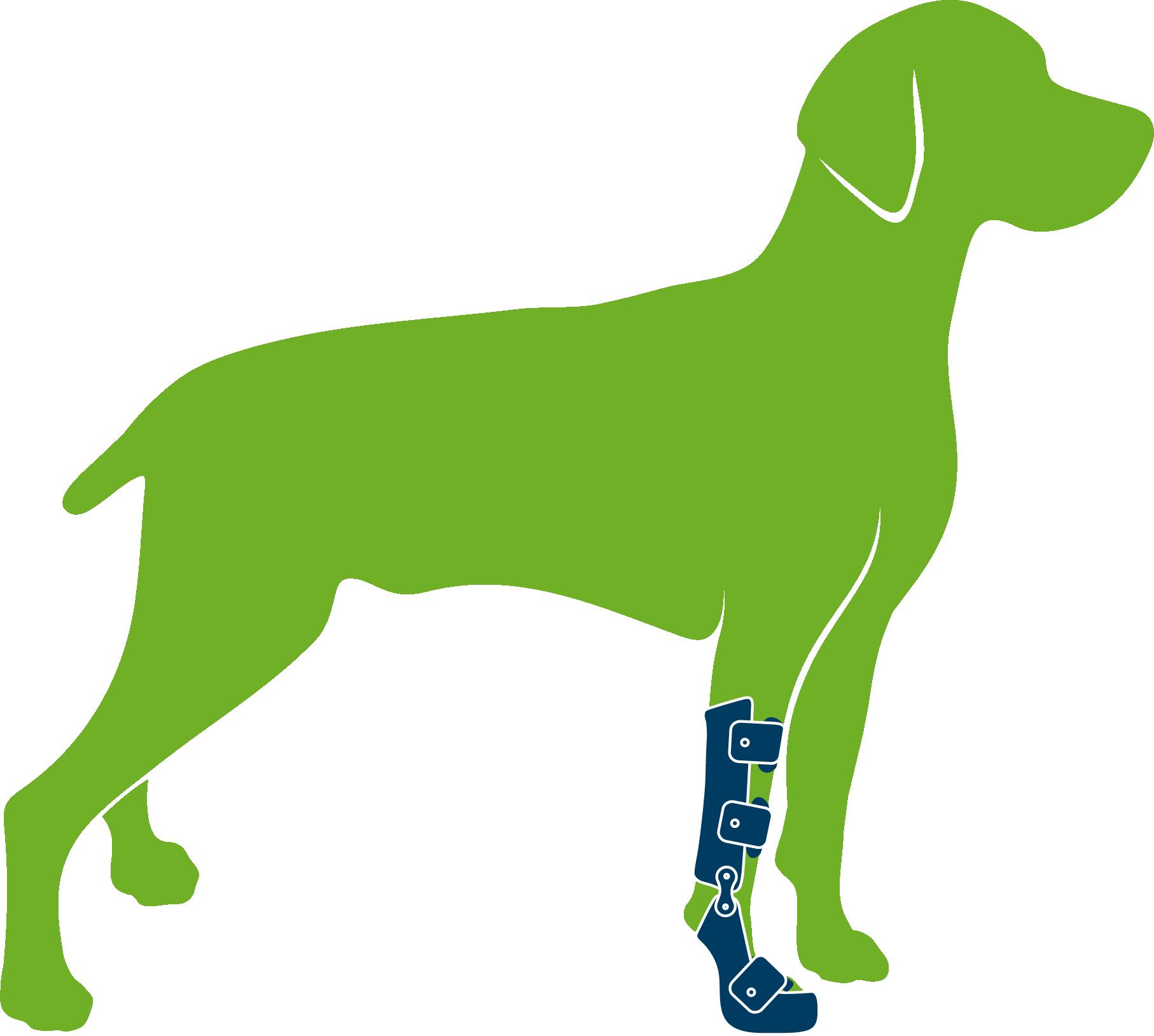 Dog Wrist Brace