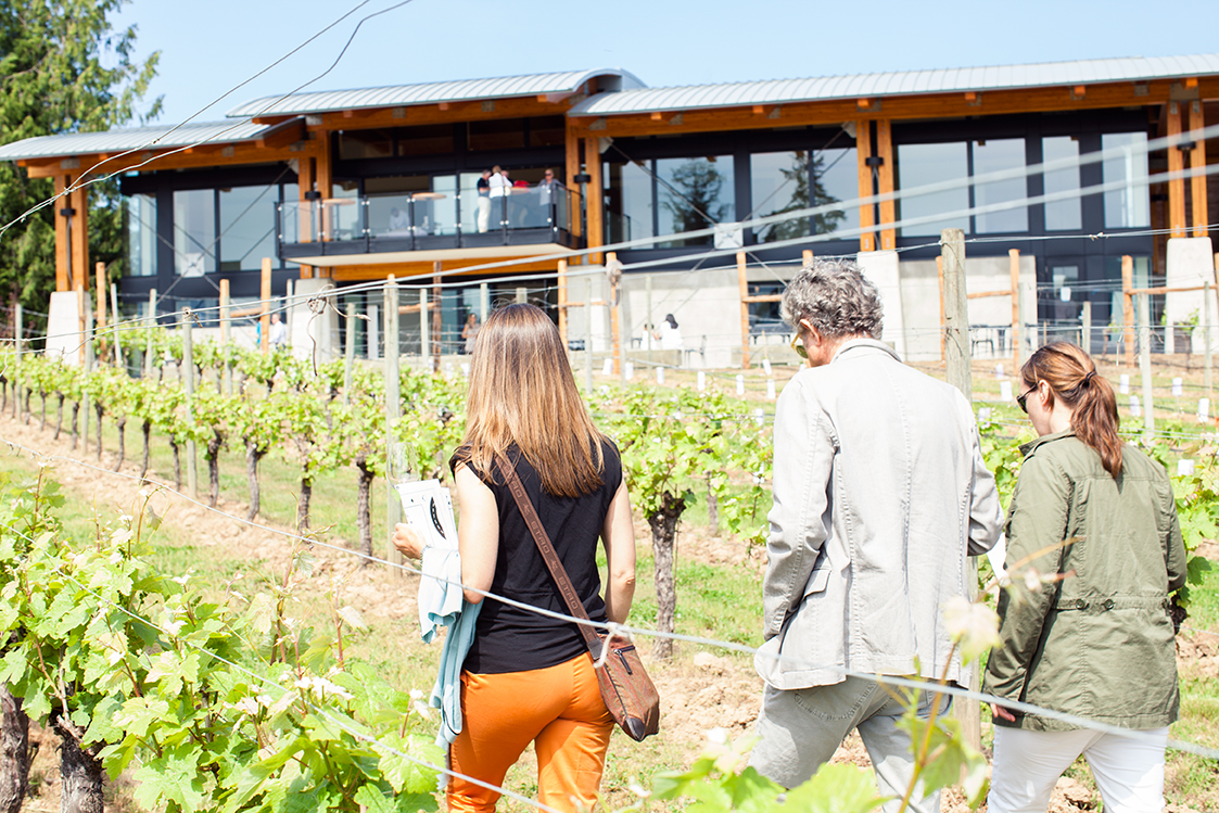 blue-grouse-estate-winery-grand-re-opening.jpg