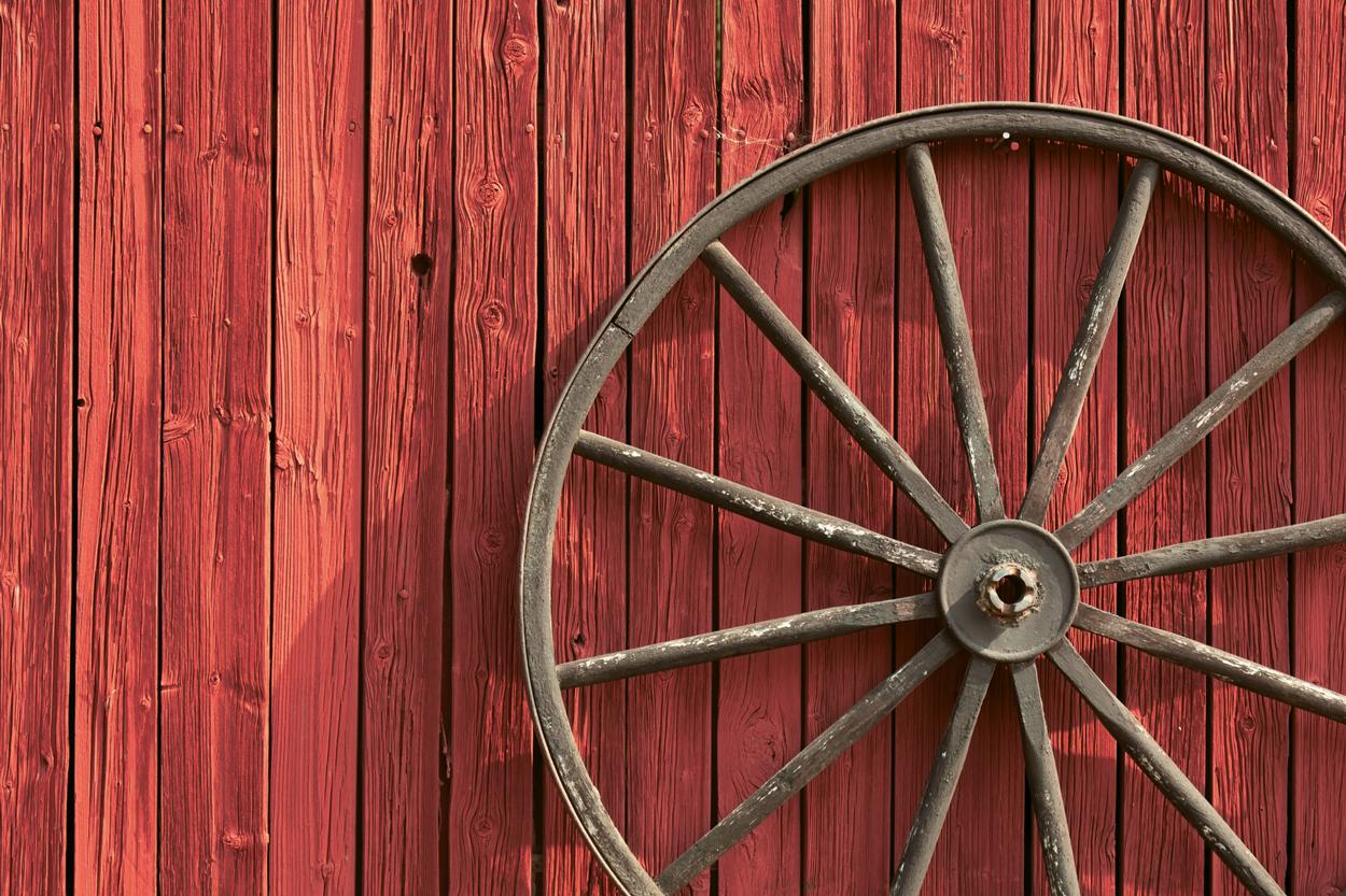 harpharpers-trail-winery-branding-wheel.jpg
