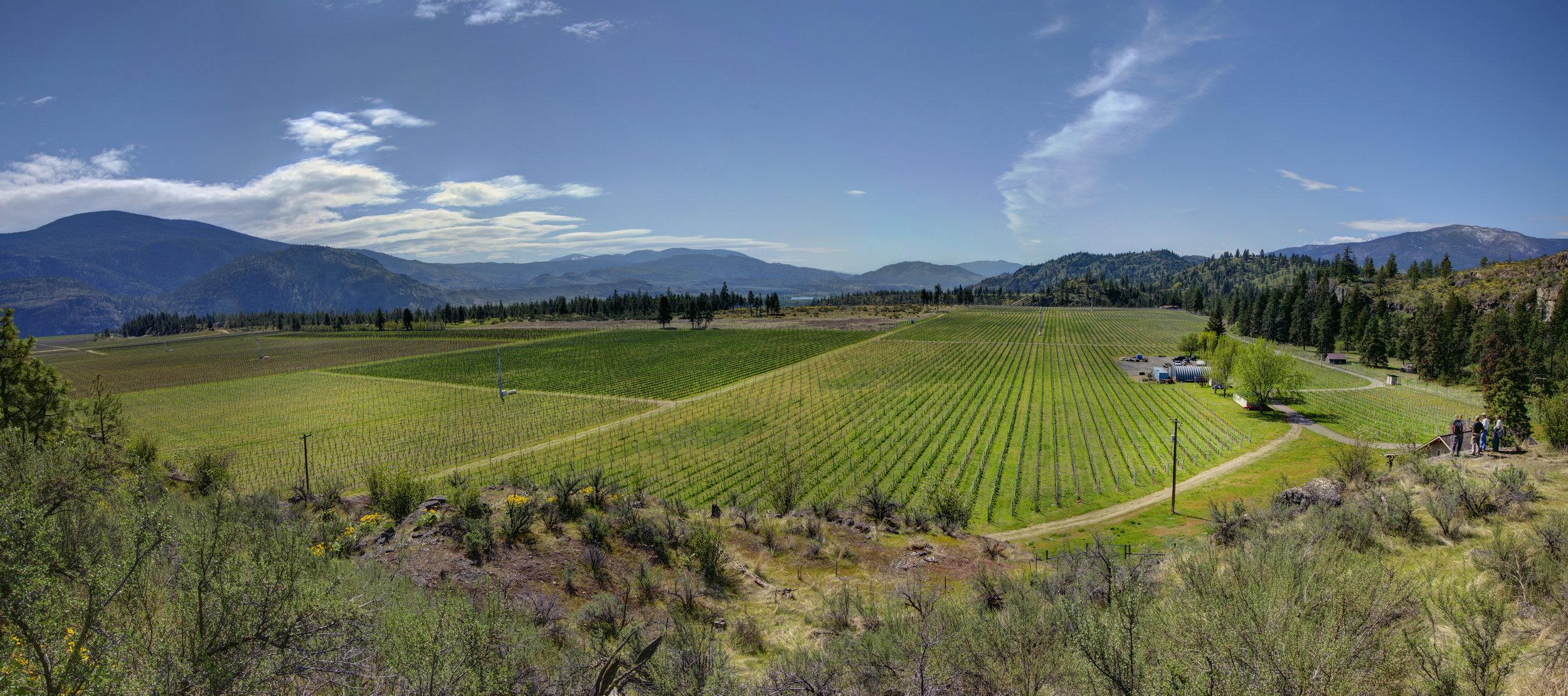 Okanagan Crush Pad winery acquires Secrest Mountain Vineyard.