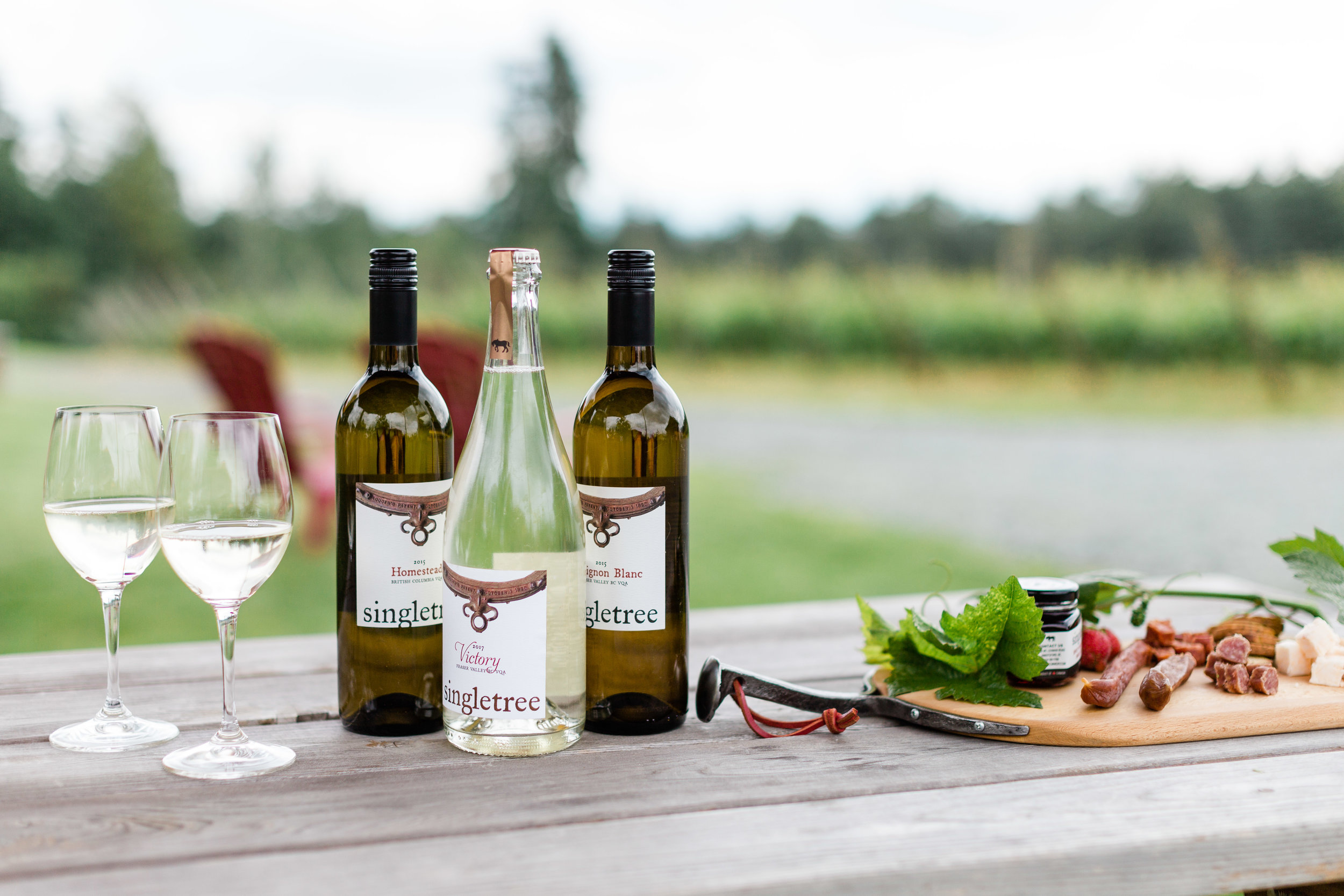 Enjoy a DIY charcuterie board at a picnic table or amidst the vines at the Abbotsford Singletree Winery, or on the patio at Singletree Naramata. Photo by BC Wine Institute.