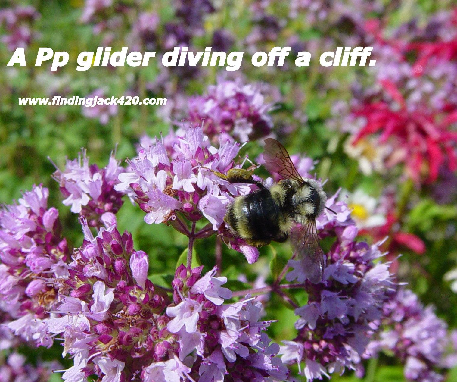 1-A Hanglider running off a Cliff.jpg