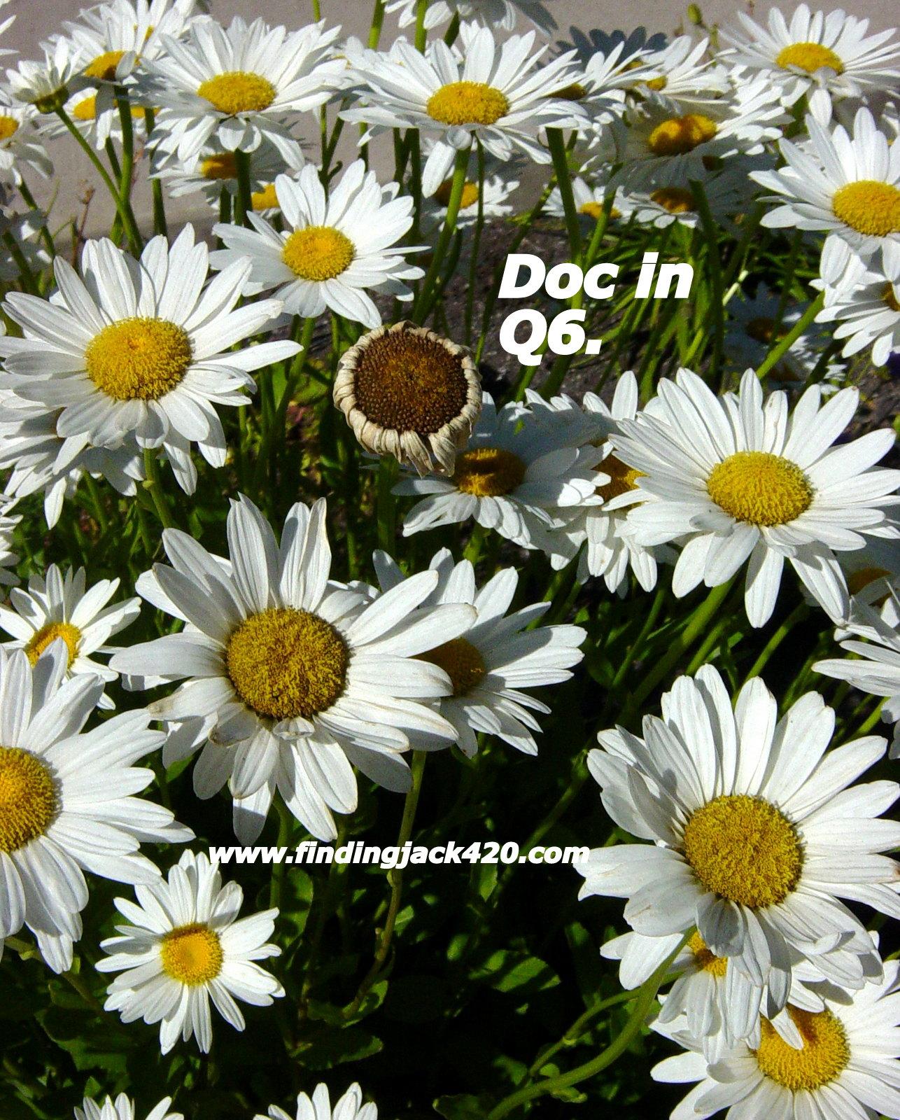 1-Doc in Q-6.jpg