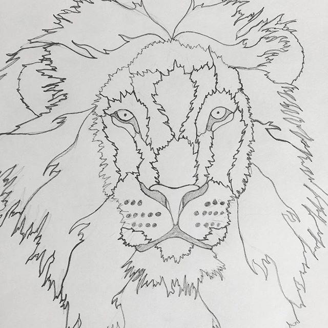 Go Lions.