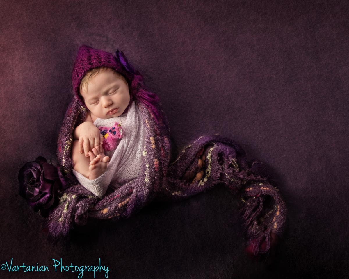 Livonia-Newborn-photographer-Vartanian-photography-25.jpg